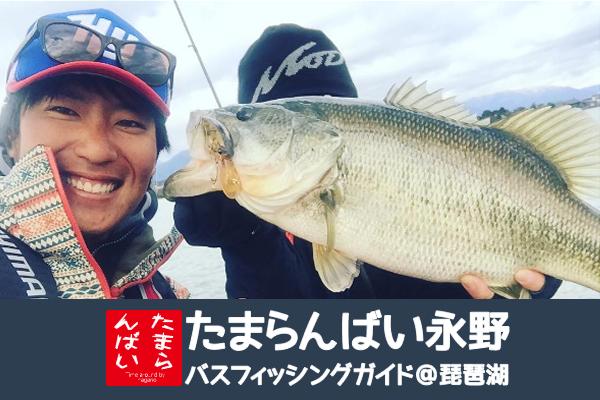 たまらんばい永野による琵琶湖バスフィッシングガイドサービス